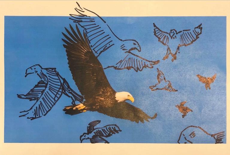 Challenging Imaginaries: Bald Eagle